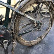 Muddy HNF Adventure